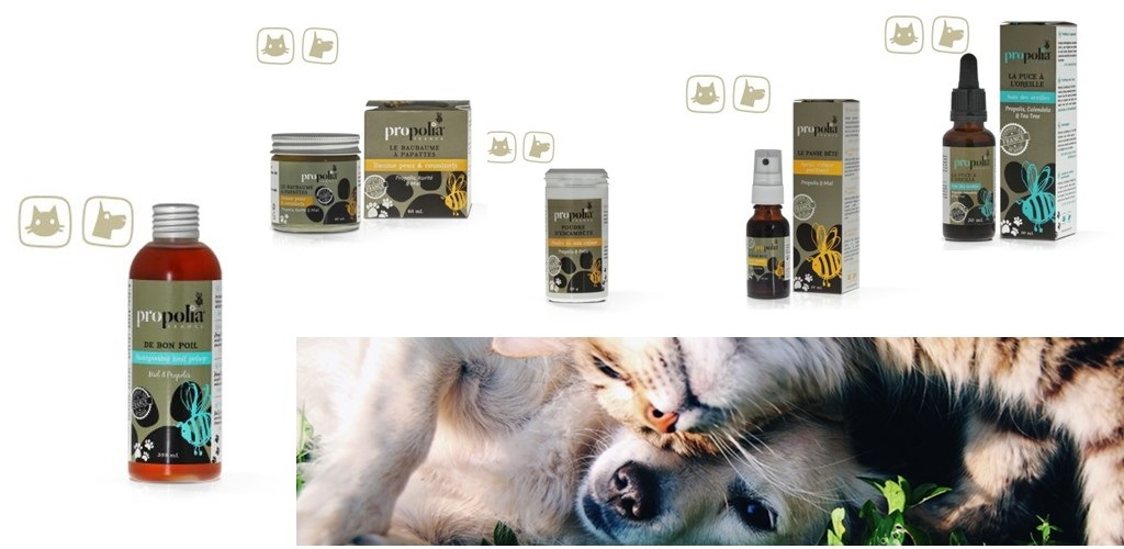Apitherapy Pet Care Products