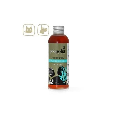 Pet Shampoo for cats and dogs