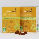 Organic Propolis, Honey & Rosemary Lozenges